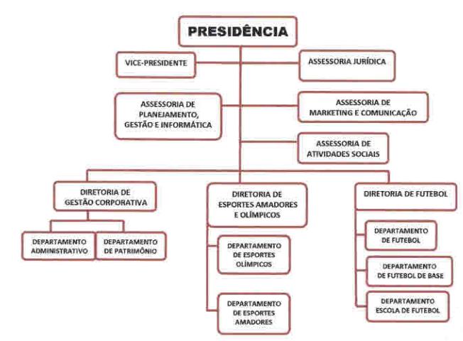 estrutura diretoria executiva