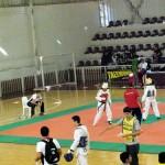 taekwondo-super-paulistao