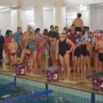 festival nataçãoDSC_0359