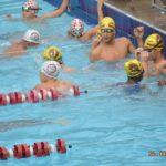 Petiz Infantil natação (25)