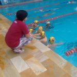 petiz natação14