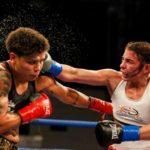 boxing web