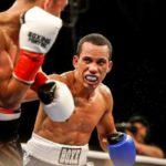 boxing web2