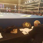 boxing web22