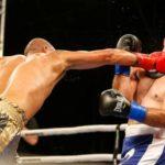 boxing web5