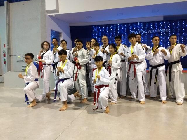 taekwondo4