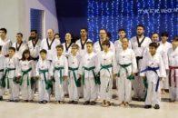 taekwondo5